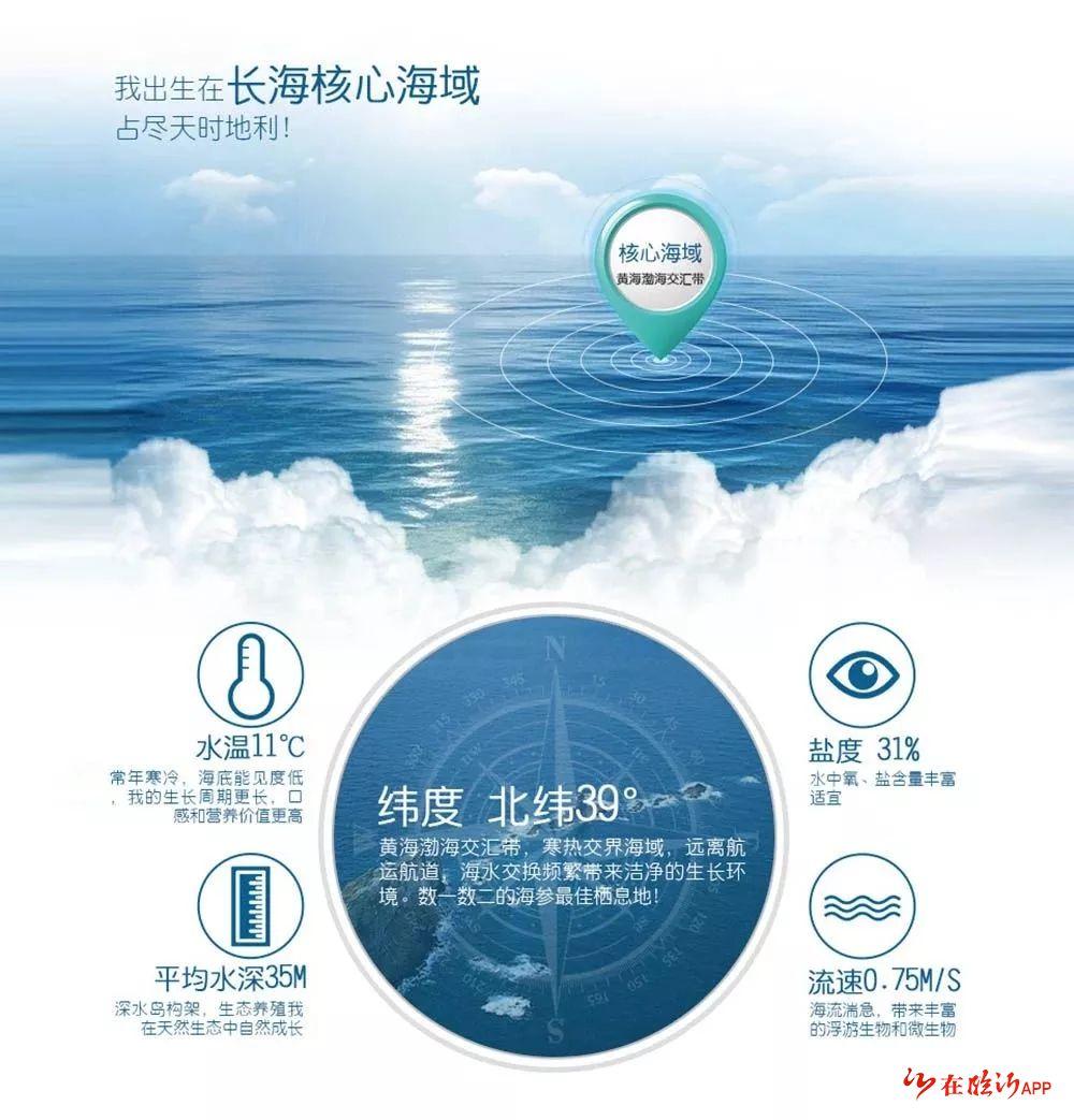 """""""东耀""""水产海参苗养殖地紧邻养马岛,与养马岛隶属同一海域,地理位置图片"""